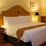 ウォーターフロント セブ シティ ホテル客室